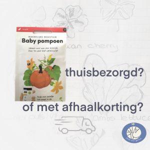 Product afbeelding baby pompoen van de Makkelijke Moestuin zaden. Kies voor thuisbezorging of afhaalkorting bij Birds and Berries België