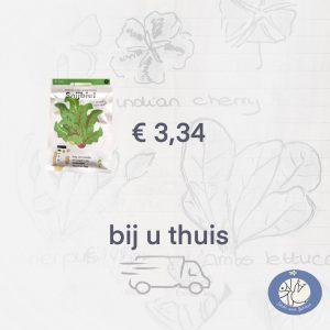 Product afbeelding Snijbiet van de Makkelijke Moestuin zaden. Birds and Berries verzendt een los zakje in briefomslag